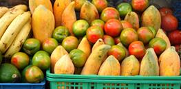 Dr Alexandre Sousa - Blog - A quem se direciona a dieta pobre em potássio